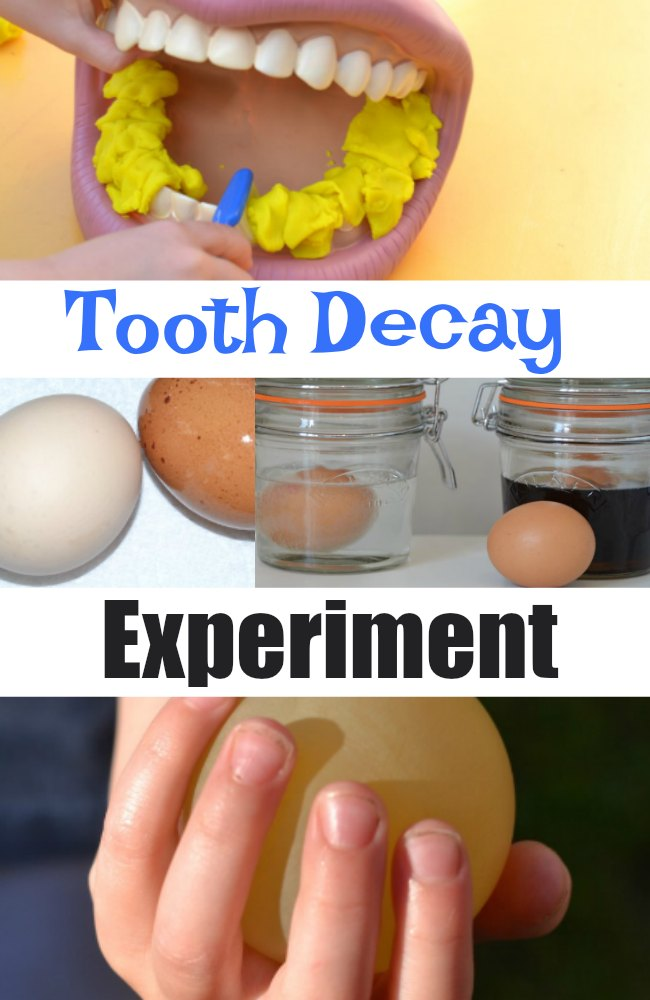 Tooth decay experiment with egg shells - learn how to keep teeth healthy with this fun visual investigation for kids #scienceforkids #makingsciencefun #eggexperiments #teethexperiments