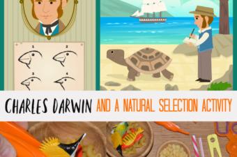 Charles Darwin and a Natural Selection Activity