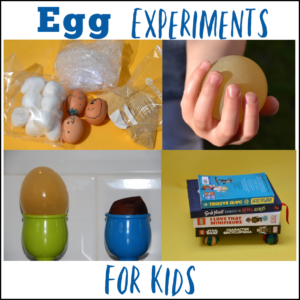 Collection of exciting egg experiments for kids