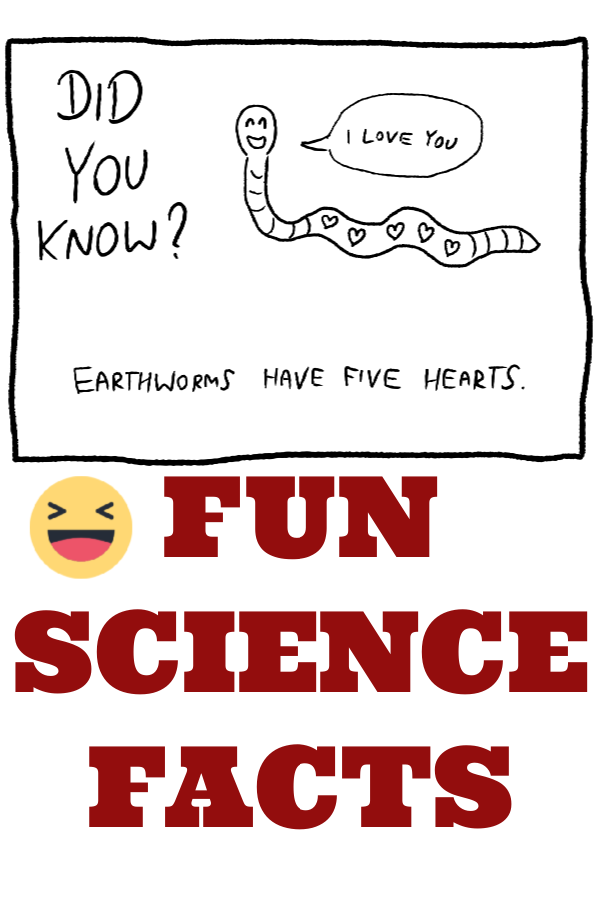 Fun Science Facts – Science Sparks