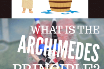 What is the Archimedes Principle
