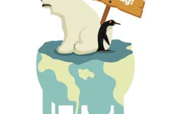 Polar Bear stood on a melting ice cap