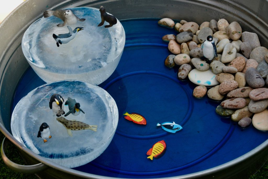 Melting Polar Ice Caps activity - easy investigation idea for British Science Week