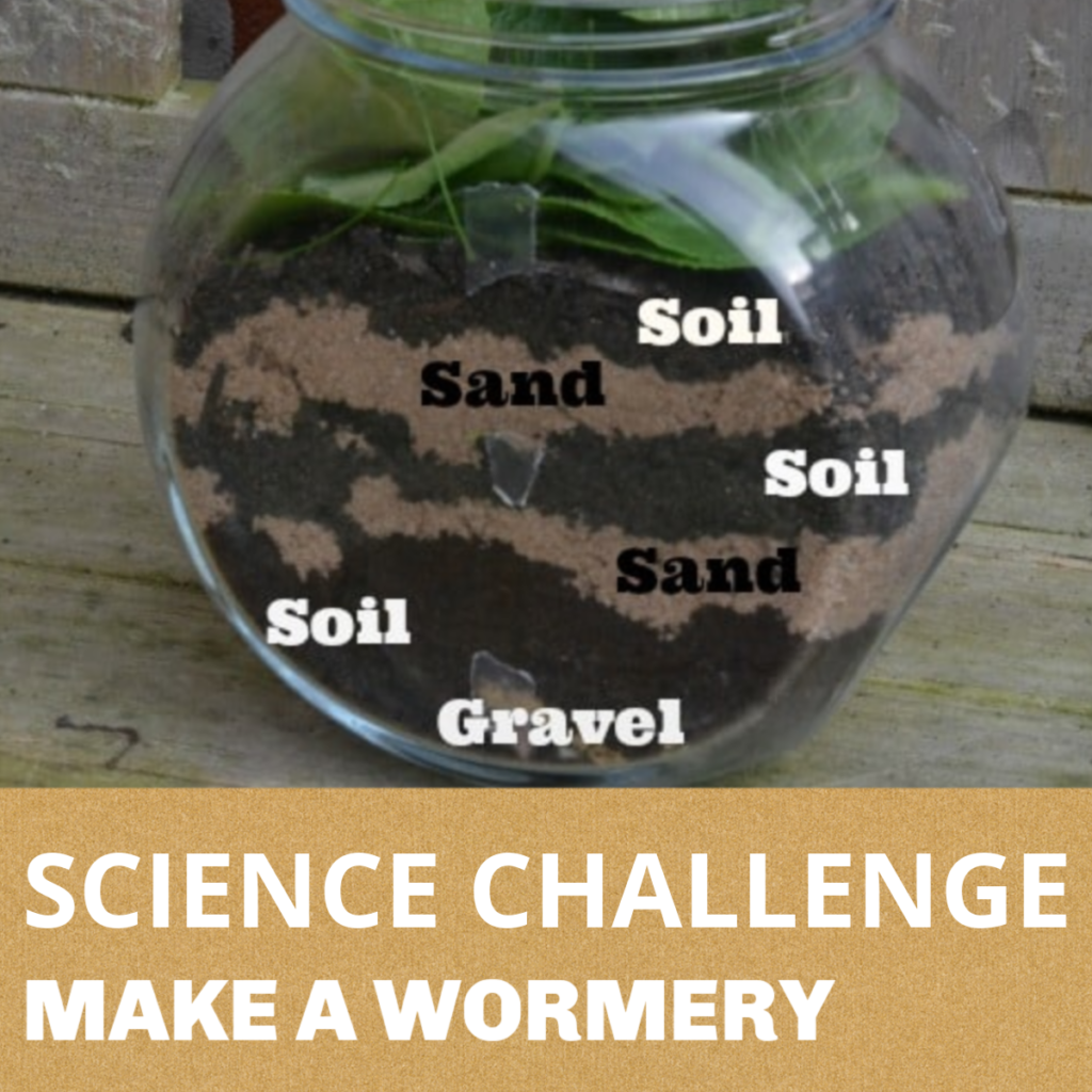 SCIENCE CHALLENGE FOR KIDS - MAKE A WORMERY