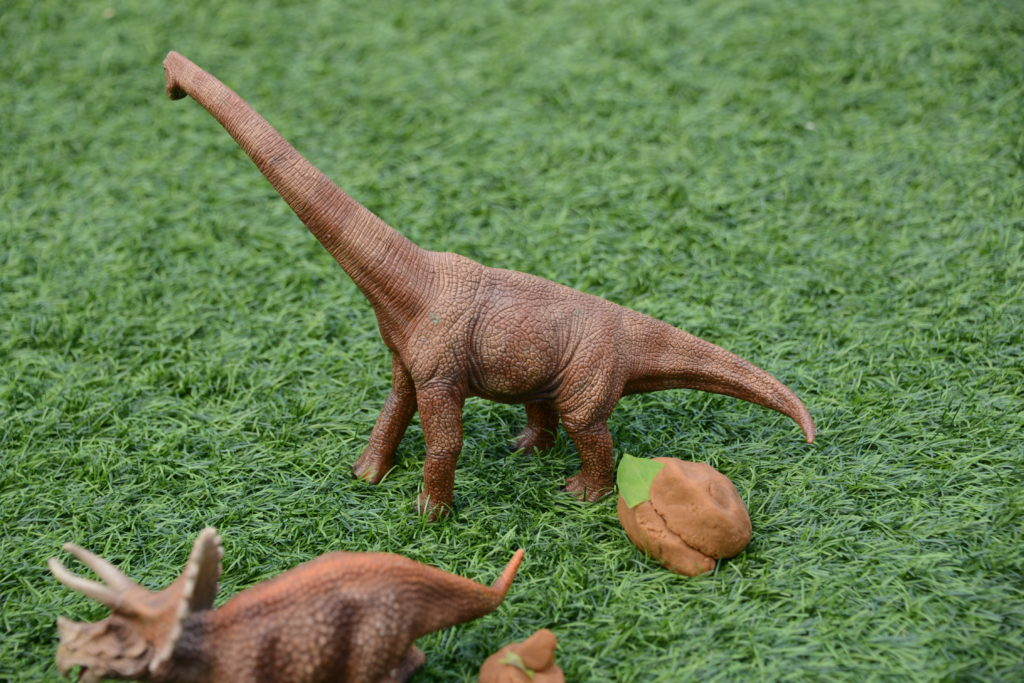 Apatosaurus dinosaur poop