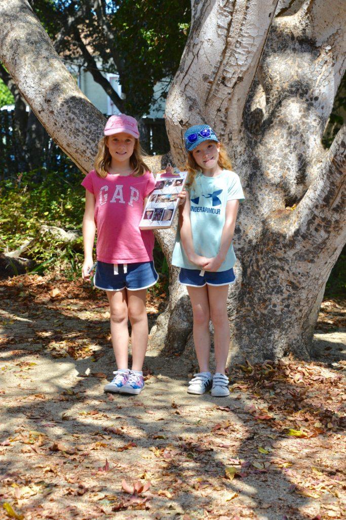Pacific Grove garden