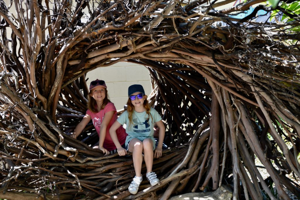 Pacific Grove Natural History Museum - spirit nest