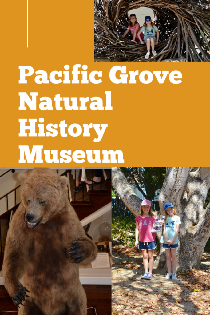 Pacific Grove Natural History Museum for Kids