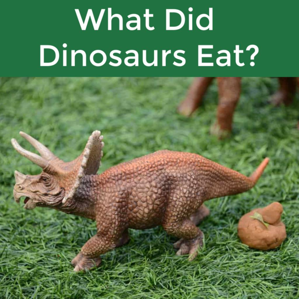 What did dinosaurs eat? Fun dinosaur activity for kids #dinosaurs #dinosauractivity #scienceforkids #scienceforearlyyears