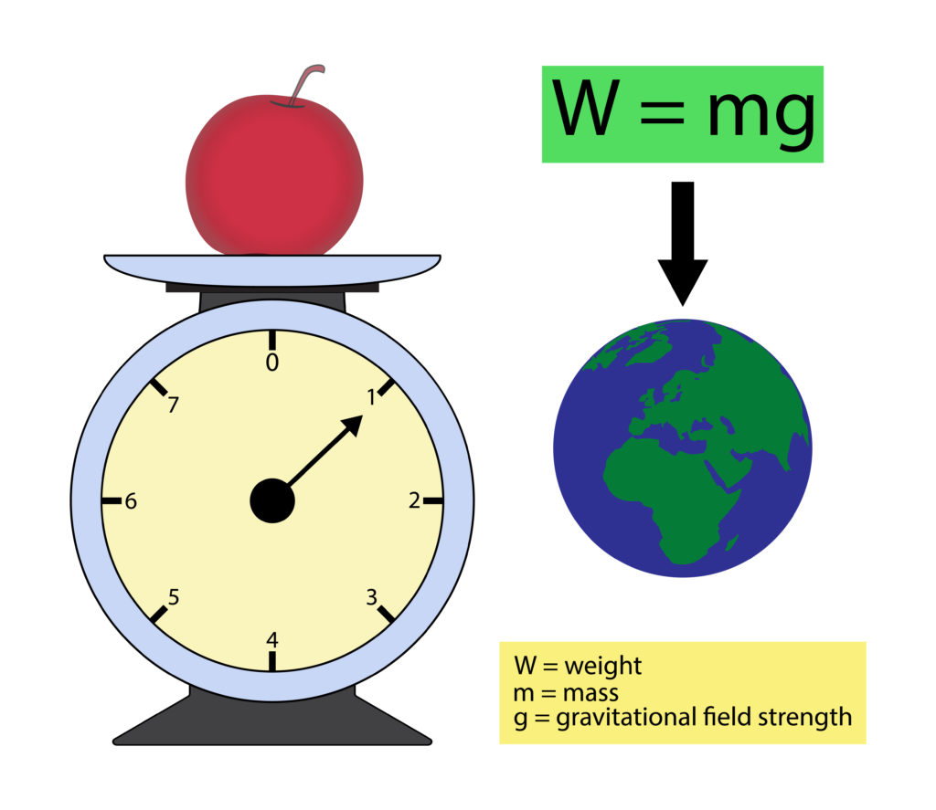 Diagram showing w = mg