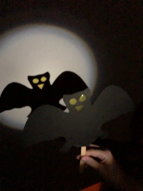 Bat shadow Puppet made with card and a lolly stick