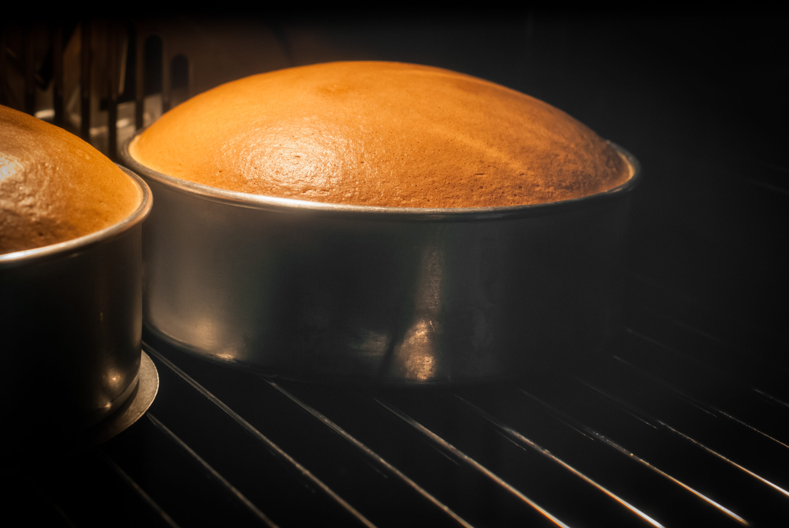 Cake browned by the Maillard Reaction