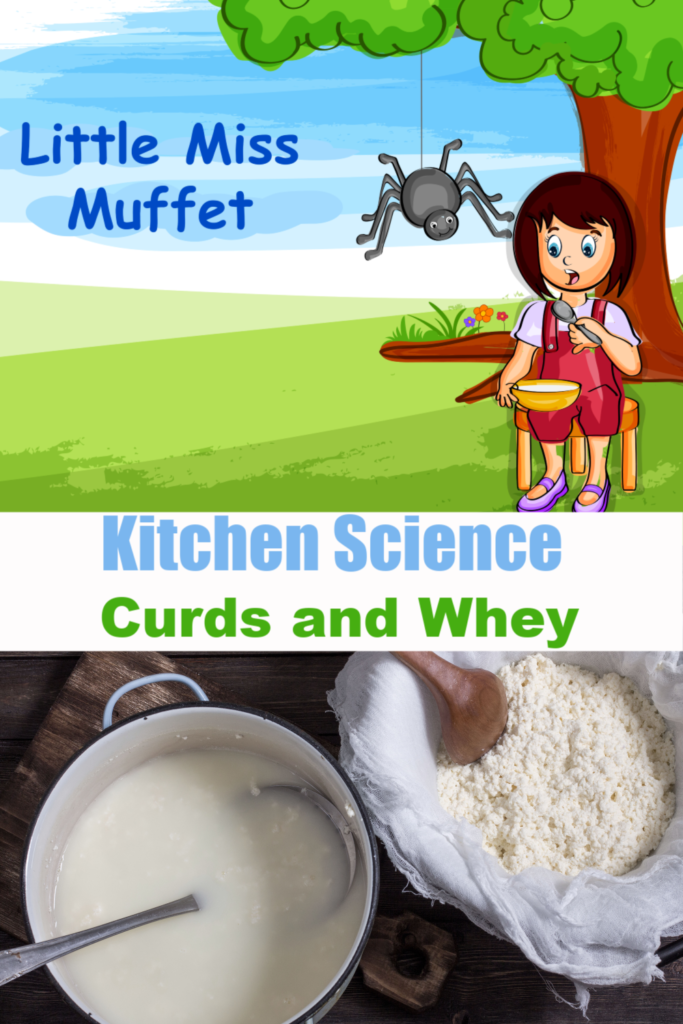 Make curds and whey like Little Miss Muffet. Fun kitchen science and nursery rhyme science activity for kids #littlemissmuffet #nurseryrhymeactivities #scienceforkids #kitchenscience