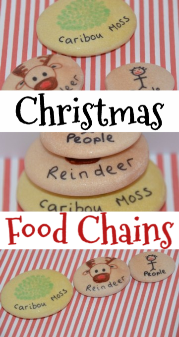 Fun Christmas food chain themed activity #scienceforkids #foodchains #christmasscience #Christmasfoodchains #foodchainsforkids