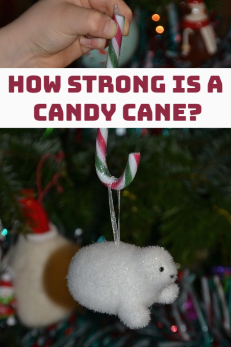 Investigation to discover how strong a candy cane is #ChristmasScience #Scienceforkids #CandyCandyactivities #candycanescience