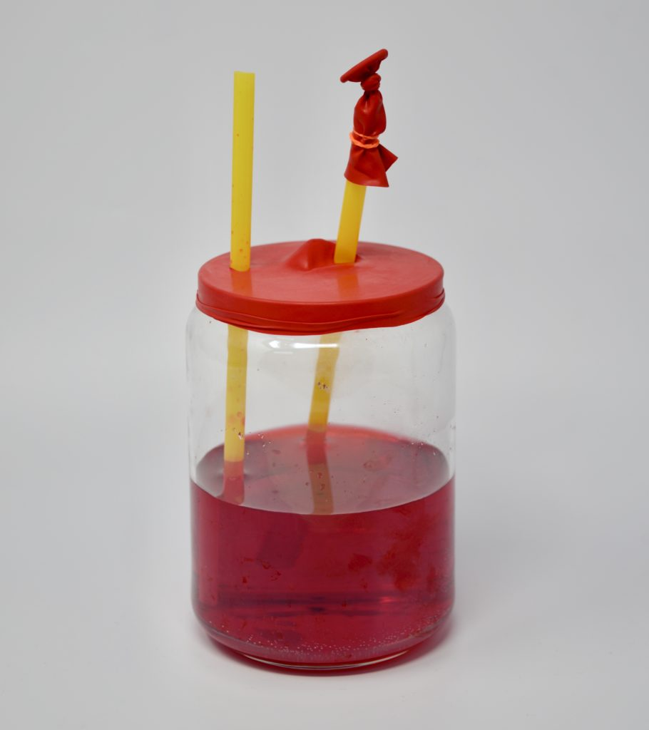 Easy Heart Pump Model - made using a jar, two straws and a balloon #scienceforkids #heartmodel