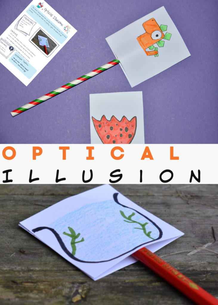 Easy optical illusion for kids made with white card and a straw. #scienceforkids #sciencewithpaper #opticalillusion #coolscience