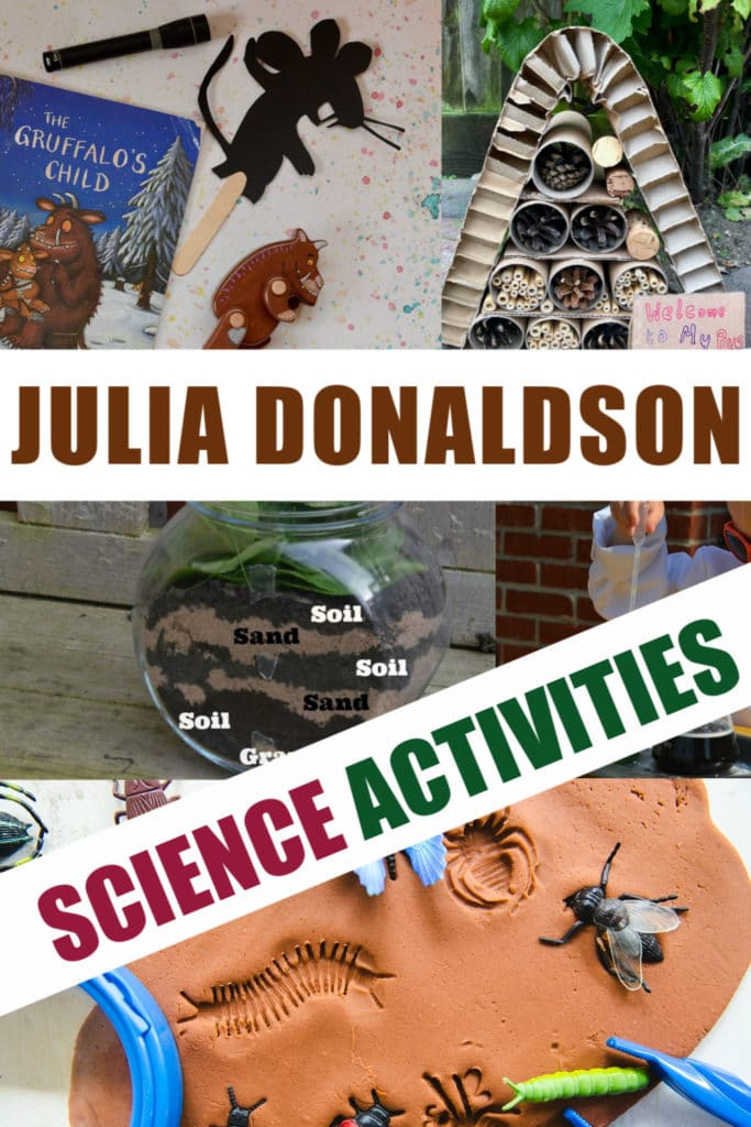 Huge collection of activities based around the Julia Donaldson books. Superworm activities, Gruffalo experiments,  room on the Broom investigations and more science for kids #JuliaDonaldson #BookActivities #preschoolscience #superworm #gruffalo #roomonthebroom #zog