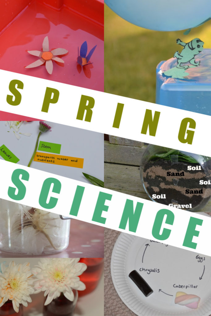Huge collection of easy spring science experiments for kids. Make an edible butterfly life cycle, filter paper butterflies, static electricity frogs, dissect a flower and lots more fun spring science activities for kids #springscience #scienceforkids #scienceisfun #makingsciencefun