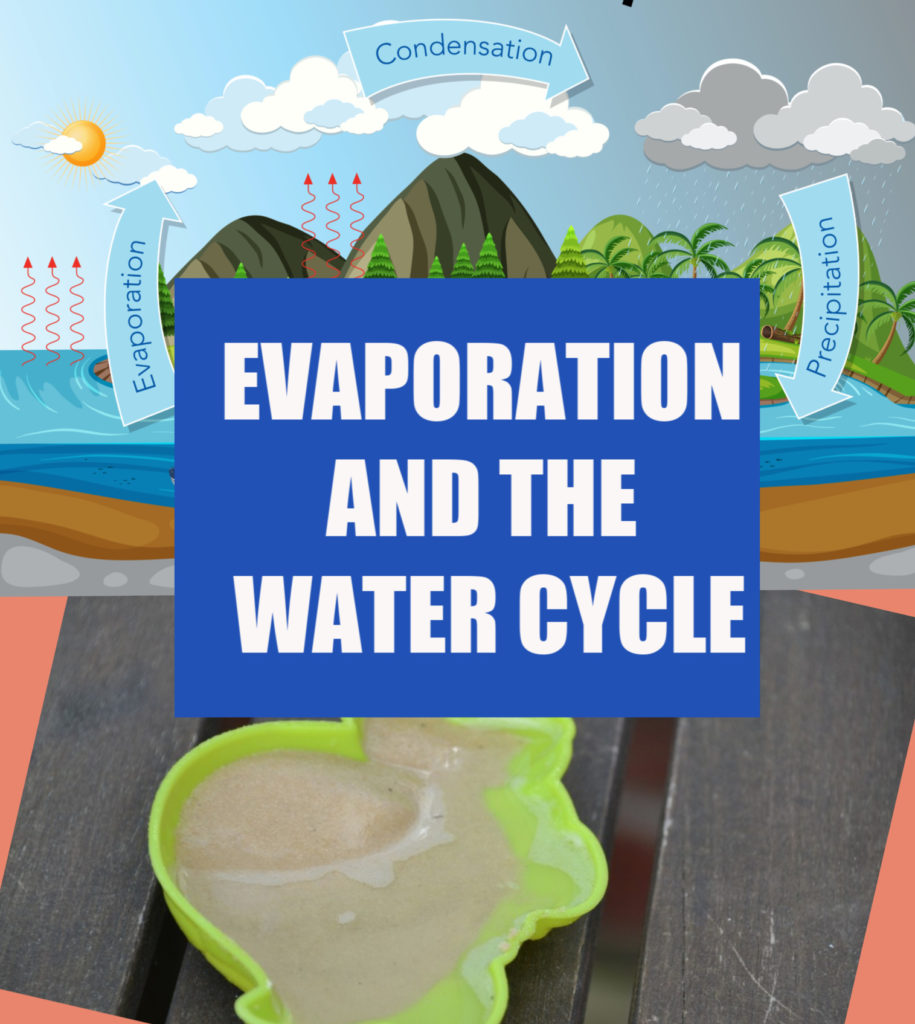 Evaporation and the water cycle - easy science for kids  #watercycle #evaporation