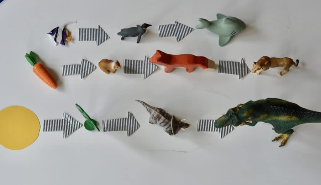 Toy animals and arrows - food chains for kids