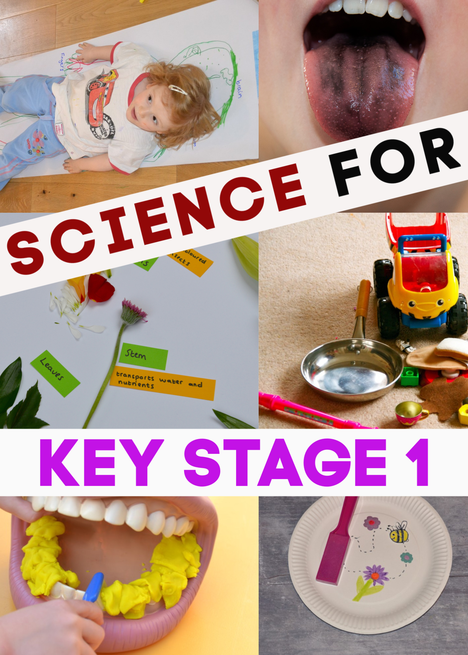 Easy science experiments for Key Stage 1 children. Topic covered are animals including humans, nutrition, light, forces and materials #KeyStage1 #Scienceforkids #scienceexperimentsforkids