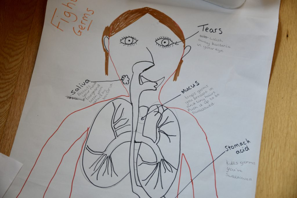 child drawn image of body parts