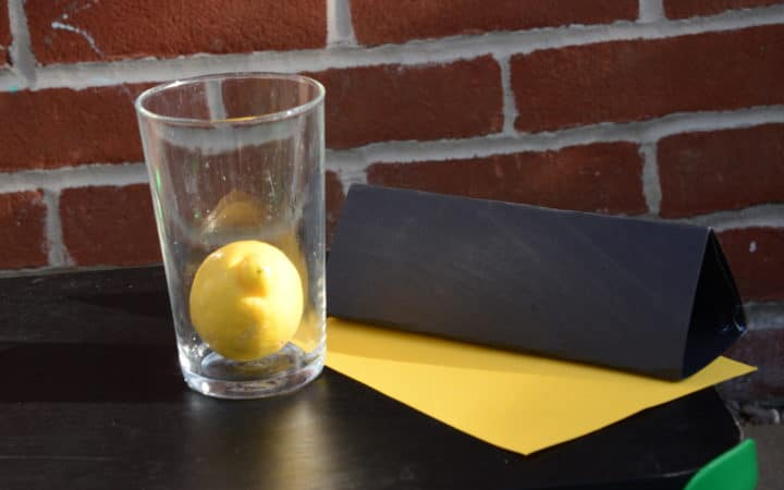 Inertia lemon drop experiment