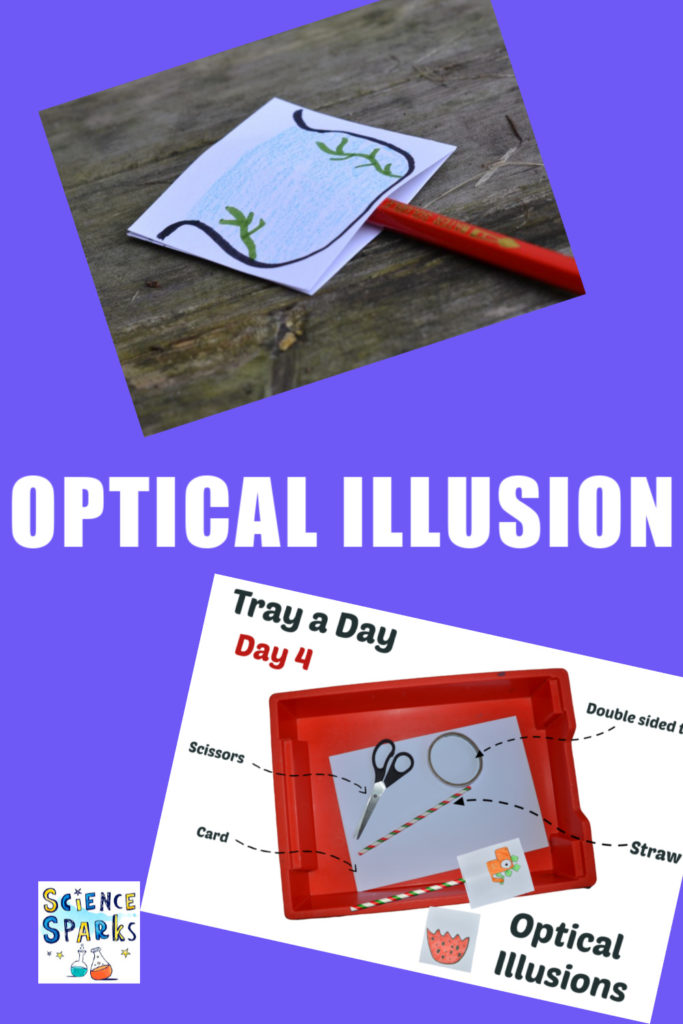 Optical Illusion collage and experiment instructions