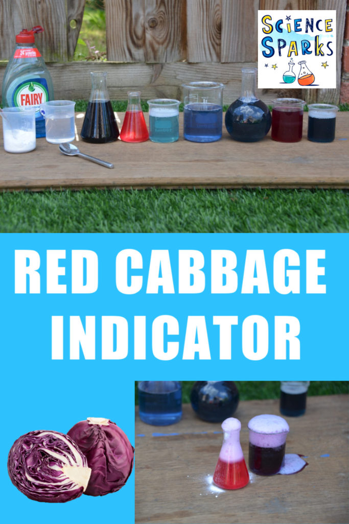 Use red cabbage to make a pH indicator. Brilliant kitchen science and chemistry experiment for kids #chemistryforkids #kitchenscience #redcabbageindicator