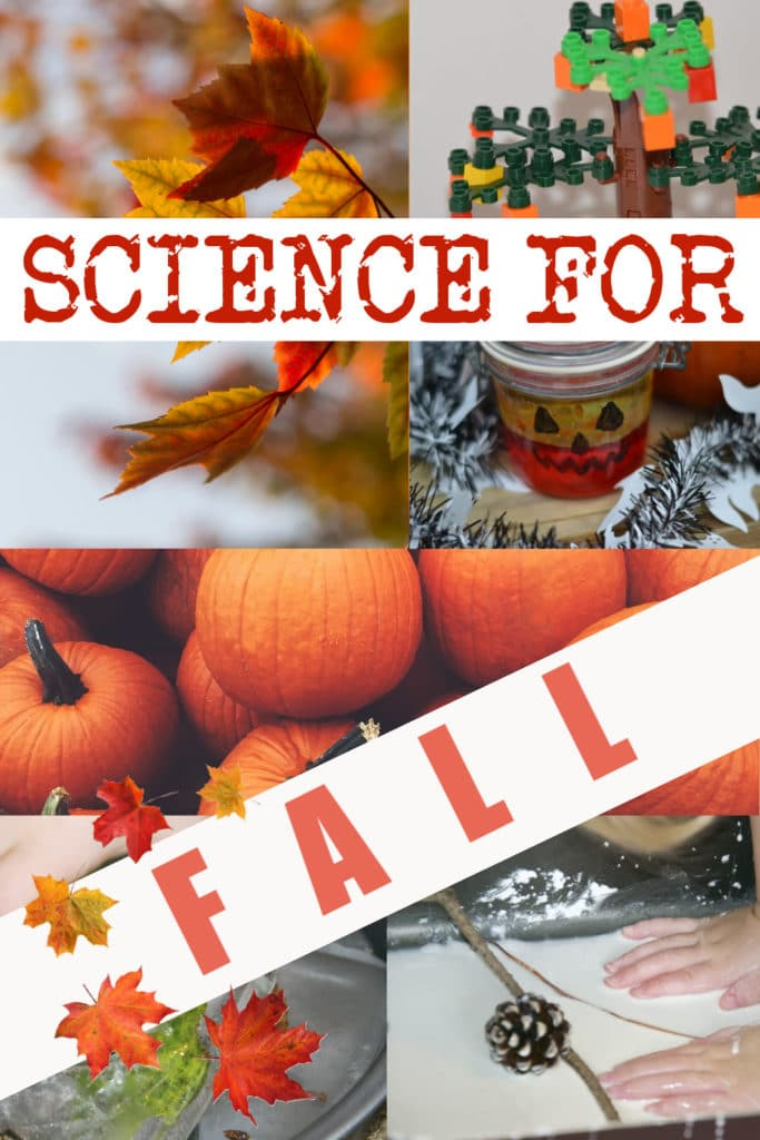 Brilliant Fall science experiments for kids -  pumpkin lava lamps, LEGO models, tree activities, leaf chromatography and more easy #autumnscience #fallscience #scienceforkids #seasonsactivities