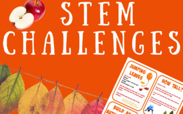 Autumn STEM Challenges