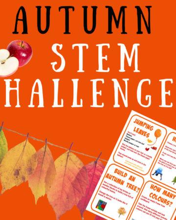 Autumn STEM Challenges