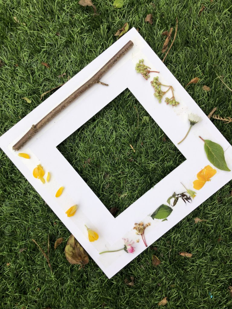 cardboard frame with different natural items attached to it.