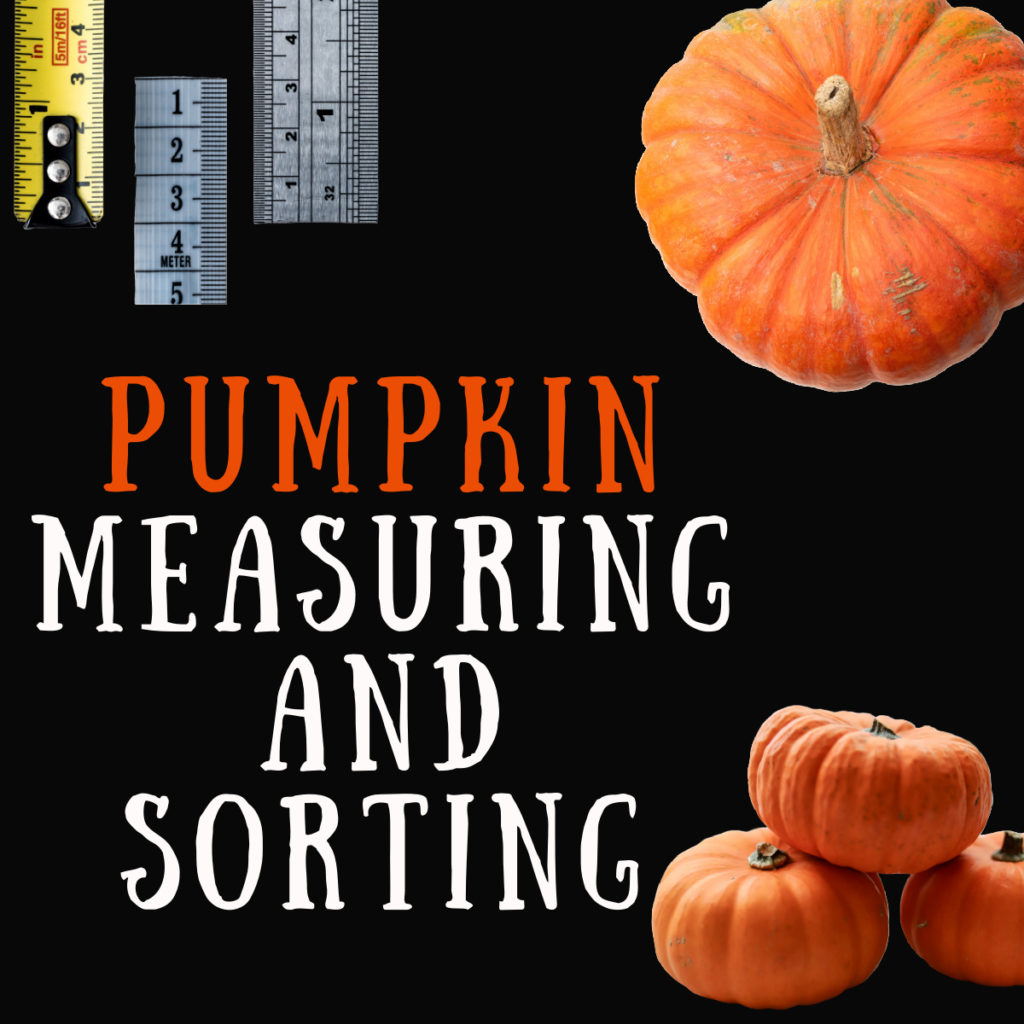 Collage of pumpkins and rulers for a pumpkin measuring activity