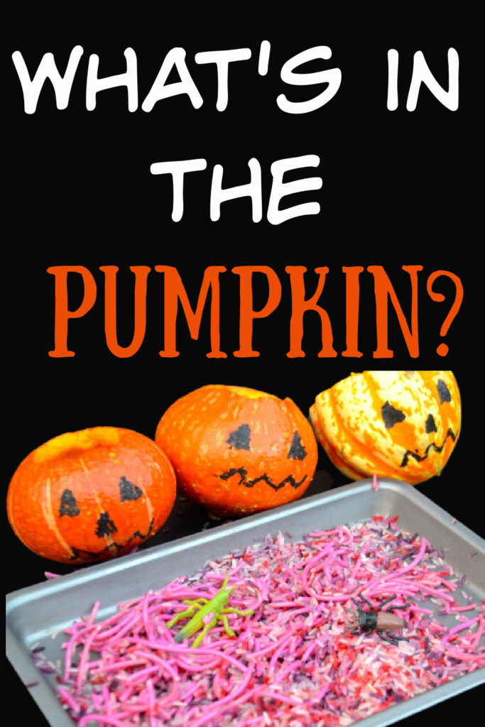 What's in the Pumpkin!! Fun spooky #HalloweenScience for kids!! Hollowed out pumpkins filled with slimy spaghetti and other things