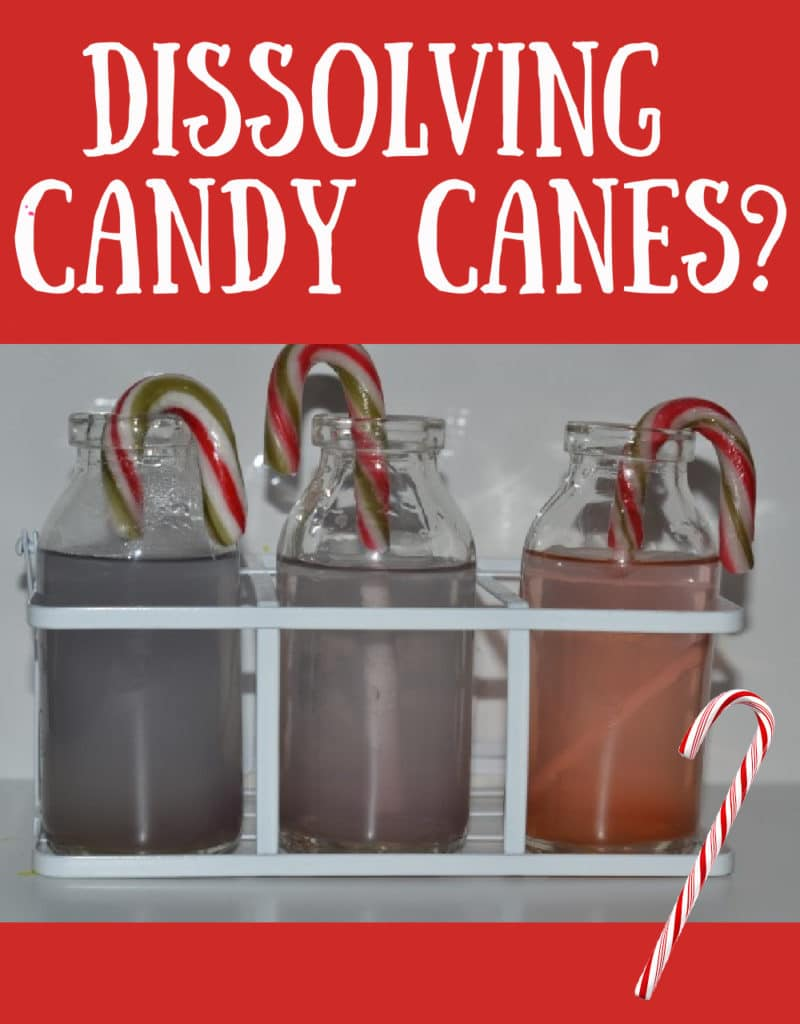 Dissolving candy cane experiment - Christmas Science for kids