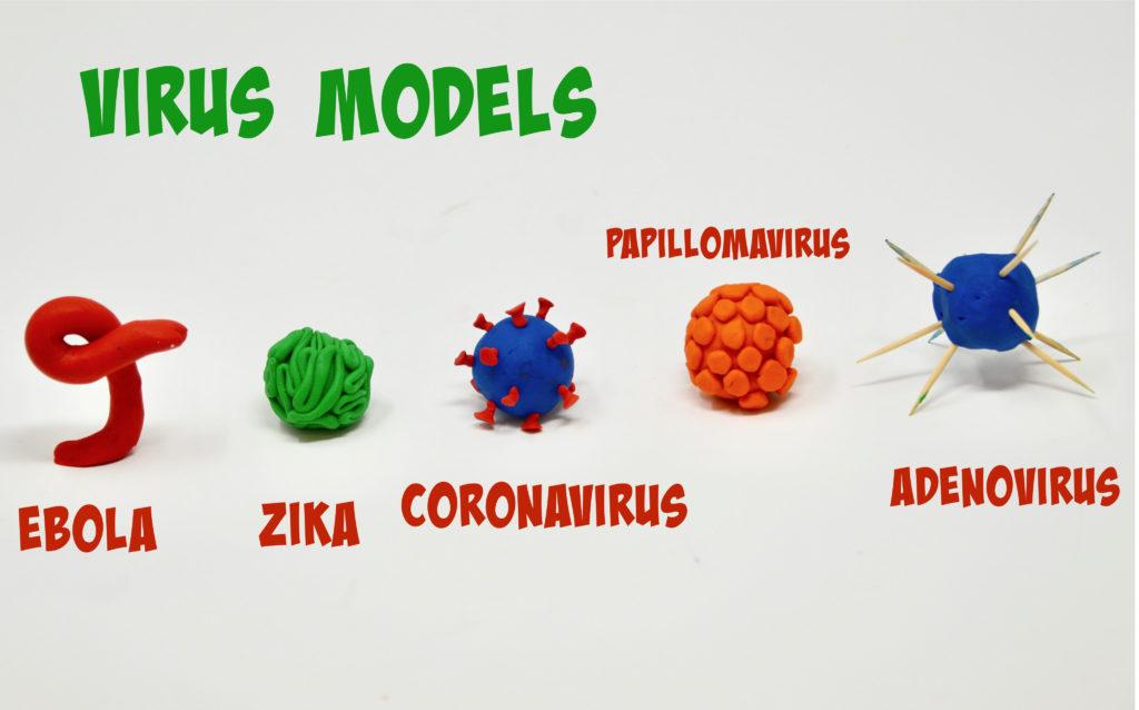 play dough virus models