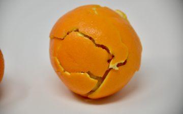 orange using peel to demonstrate plate tectonics