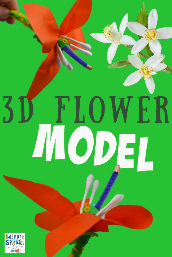 Image of a 3D flower model from ear buds, pipe cleaners and tissue paper