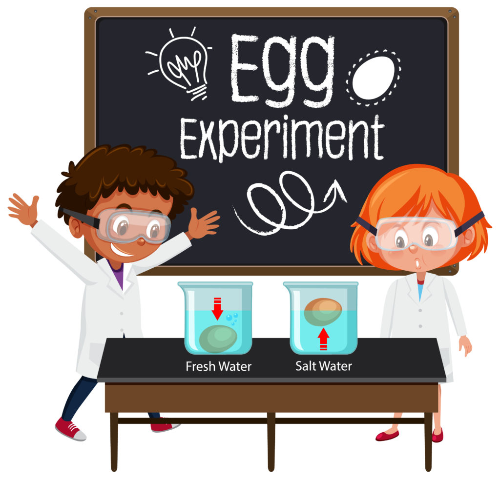 Image of children doing an egg experiment, using salt and water