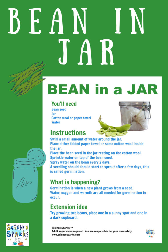 Bean in a jar instructions