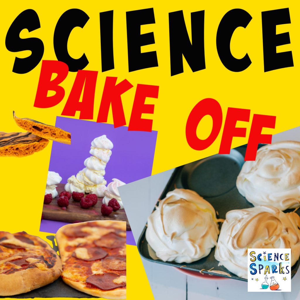 Image of baked alaska, pizza and meringue towers to a science based bake off!