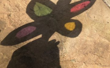 colourful butterfly shadow puppet