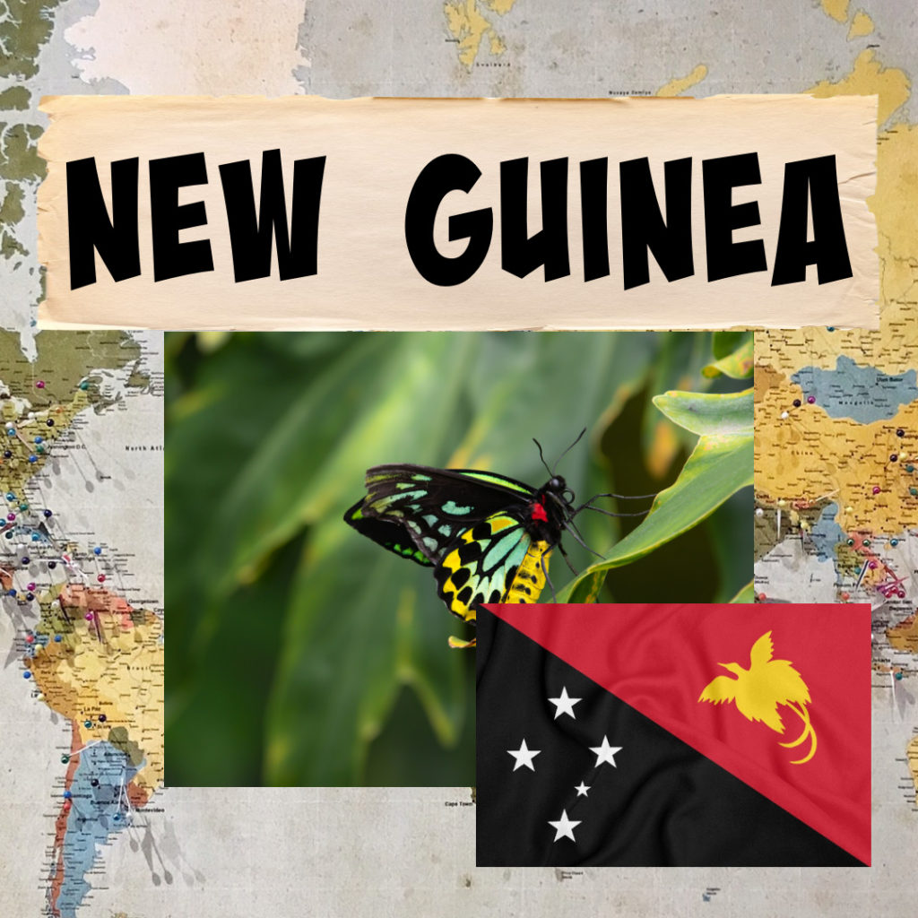 Image of Queen Alexandra's Birdsong butterfly from New Guinea and the New Guinea flag