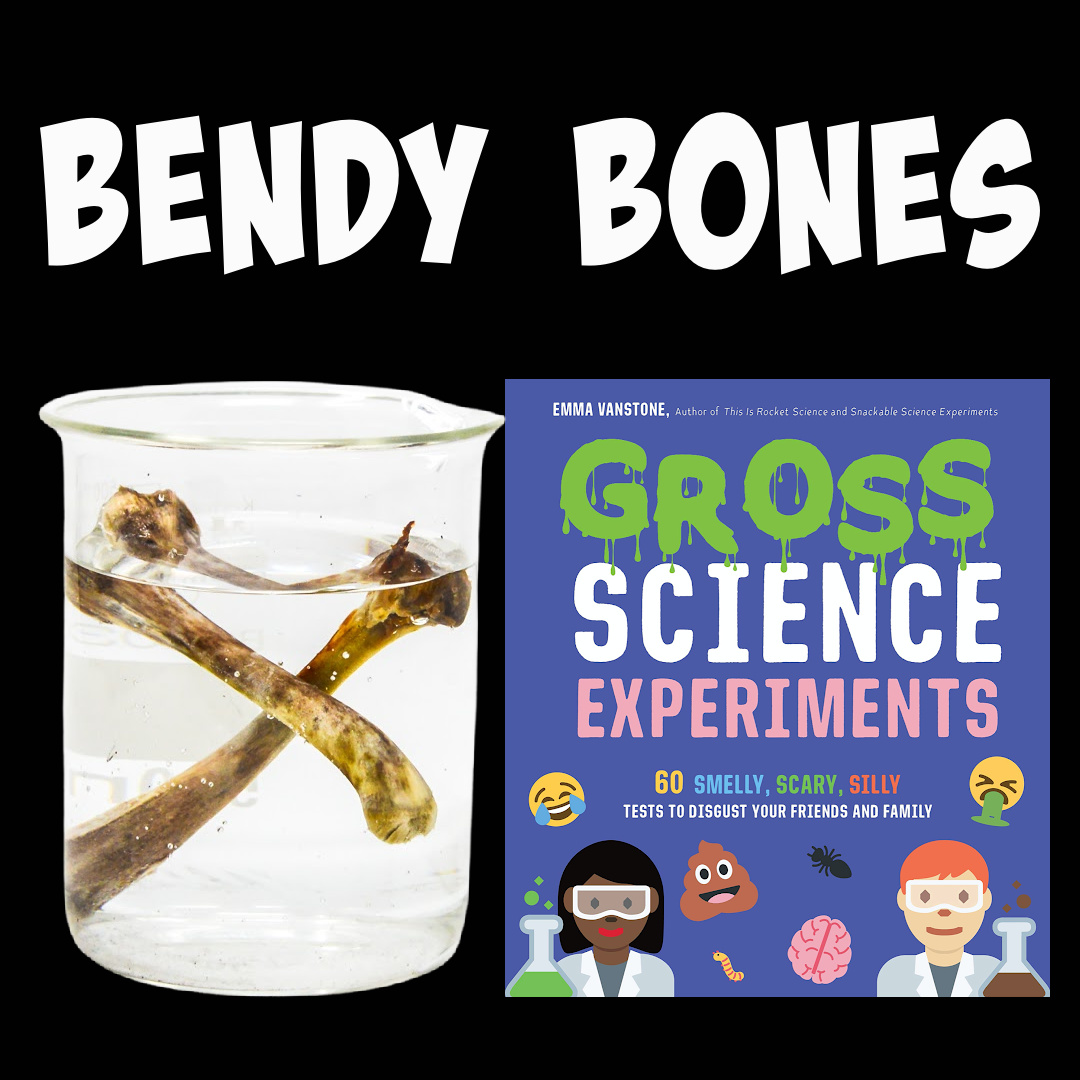 Image of bones made bendy by placing in vinegar and Gross Science book