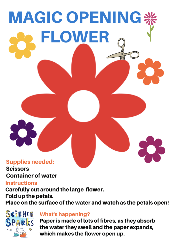 Image of a template for an opening flower experiment