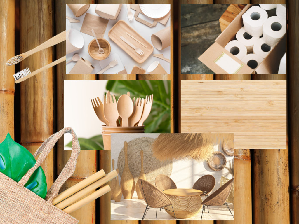 Uses of bamboo - toothbrush, utensils, furniture