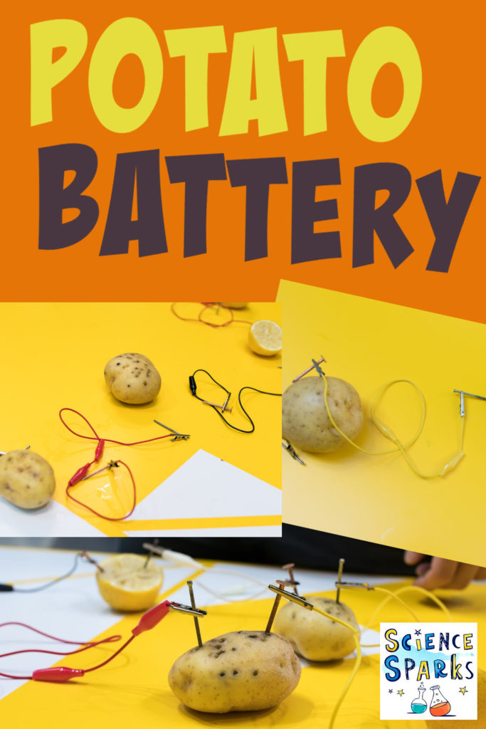 How to make a potato battery using a circuit. Fun electricity project for kids!