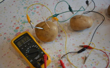 2 potatoes and a voltmeter showing the current passing through